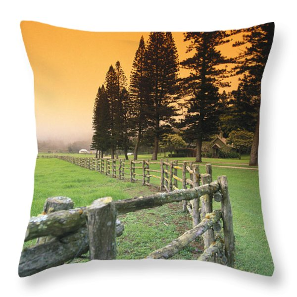 Lanai, City View Throw Pillow by Ron Dahlquist - Printscapes