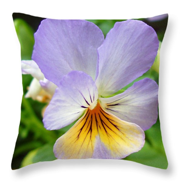 Lavender Pansy Throw Pillow by Nancy Mueller