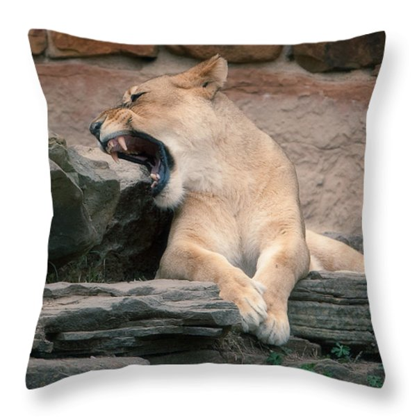 Lazy Day Throw Pillow by Jonas Wingfield