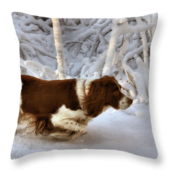 Leading the Way Throw Pillow by Kristin Elmquist