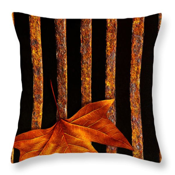 Leaf in drain Throw Pillow by Carlos Caetano