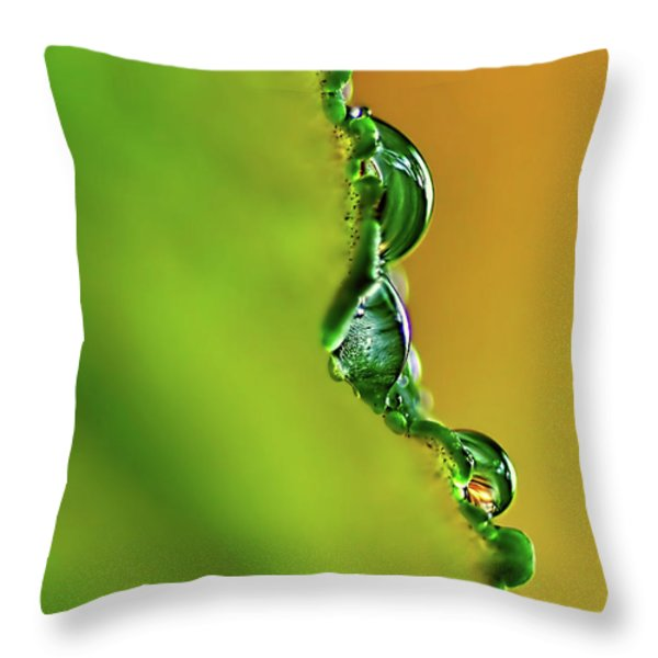 Leaf Profile And Water Droplets Throw Pillow by Kaye Menner