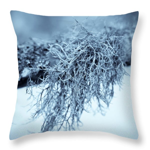 Throw Pillow featuring the photograph Lichen 1207 Nature Abstract by Frank Tschakert