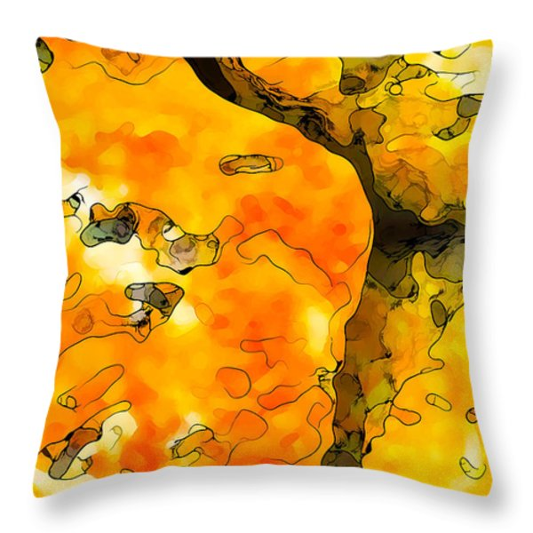 Lichen Abstract 1 Throw Pillow by Bill Caldwell -        ABeautifulSky Photography