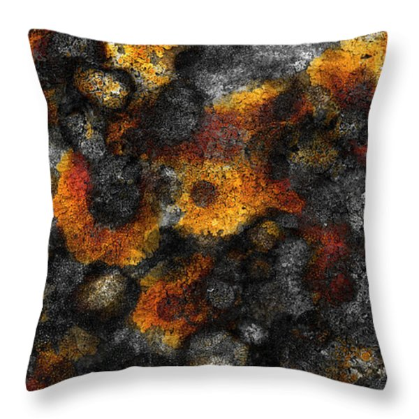 Throw Pillow featuring the painting Lichen by Frank Tschakert