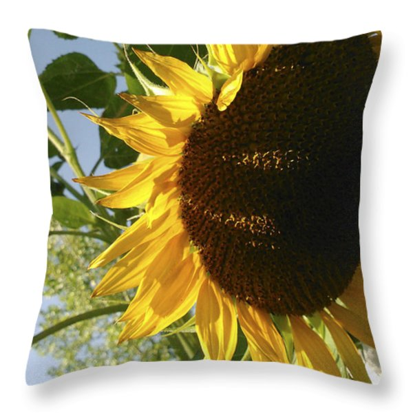 Life Is Good Throw Pillow by Jane Autry