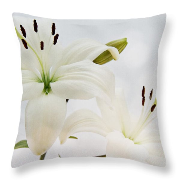 Like Heaven... Throw Pillow by Angela Doelling AD DESIGN Photo and PhotoArt