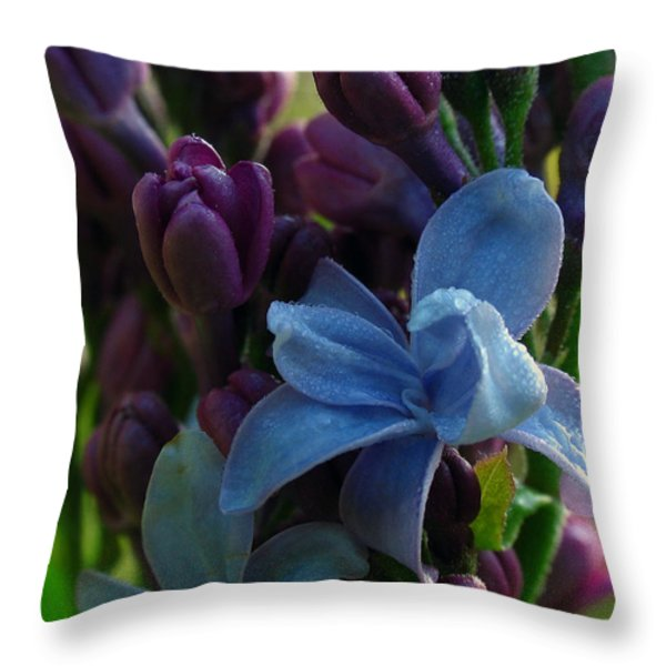 Lilac Throw Pillow by Juergen Roth