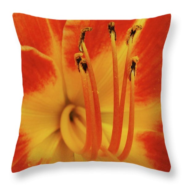 Lilly Macro Throw Pillow by Michael Peychich