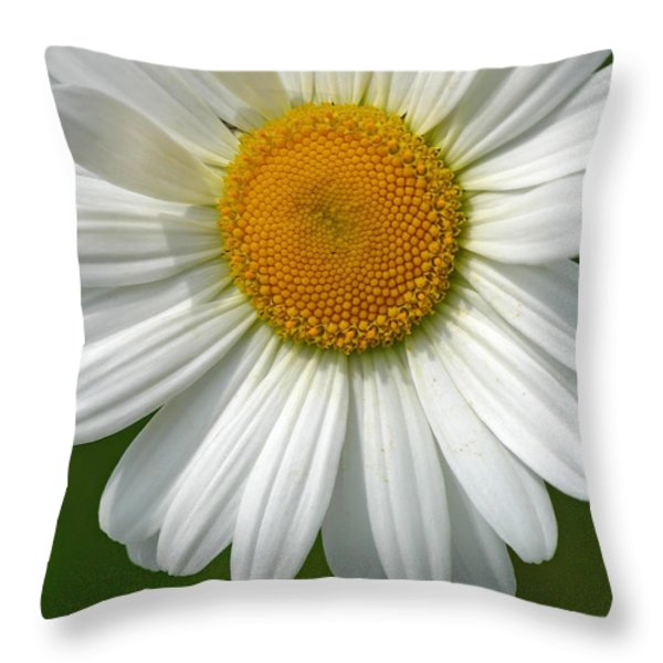 Little Darling Throw Pillow by Juergen Roth