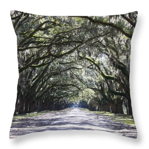 Live Oak Lane in Savannah Throw Pillow by Carol Groenen