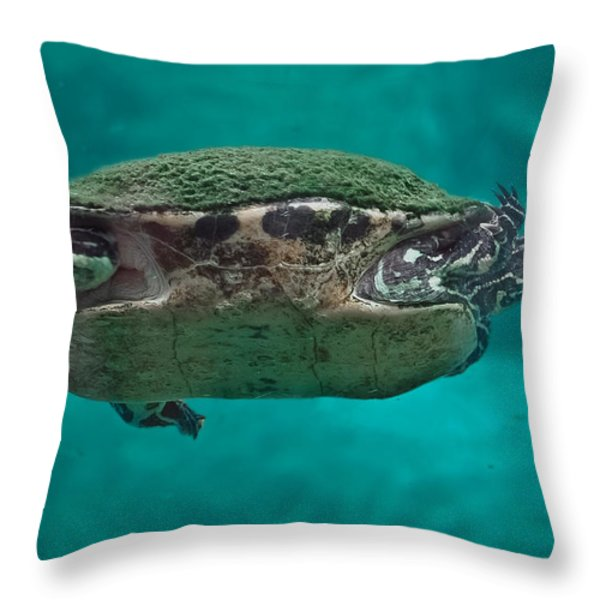 Loggerhead Plastron Throw Pillow by DigiArt Diaries by Vicky B Fuller