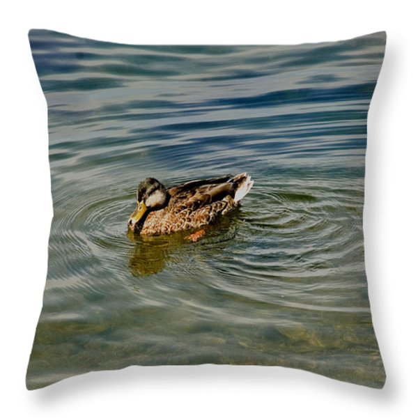 Lone Duck Swimming On A River Throw Pillow by Todd Gipstein