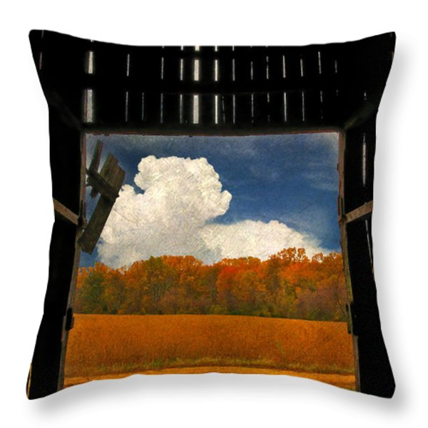 Looking Out Throw Pillow by Lois Bryan