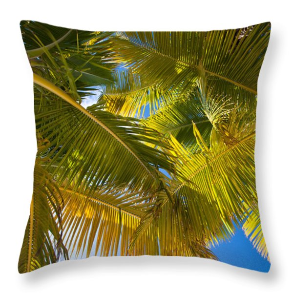 Looking Up Throw Pillow by Adam Romanowicz