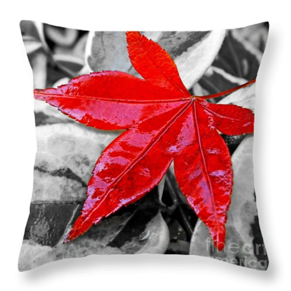 Lost Throw Pillow by Kaye Menner