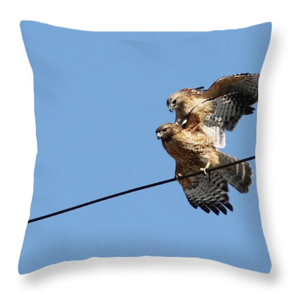 Love Is in the Air Throw Pillow by Mircea Costina Photography