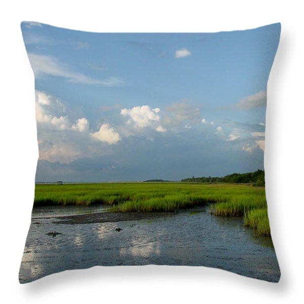 Low Tide Throw Pillow by Suzanne Gaff