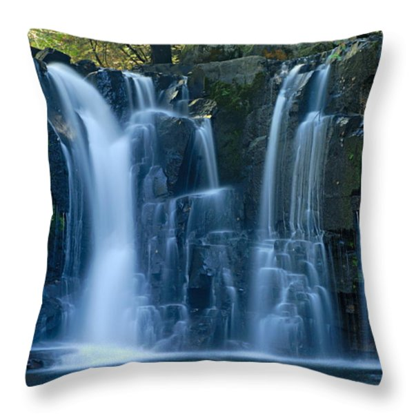 Lower Johnson Falls 2 Throw Pillow by Larry Ricker