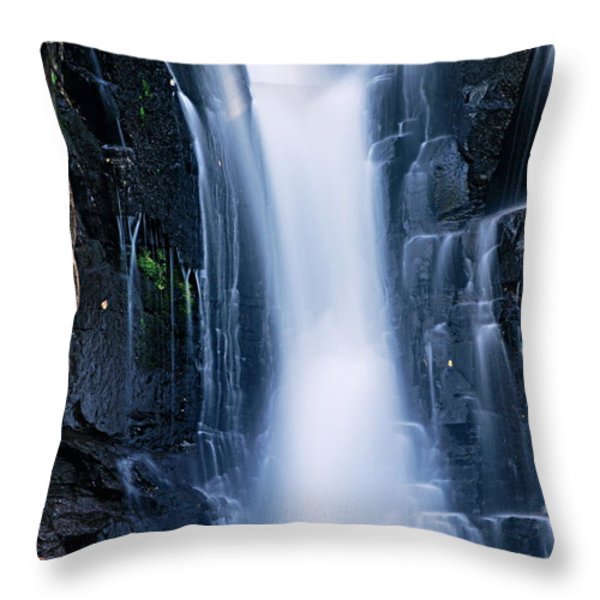 Lower Johnson Falls 3 Throw Pillow by Larry Ricker