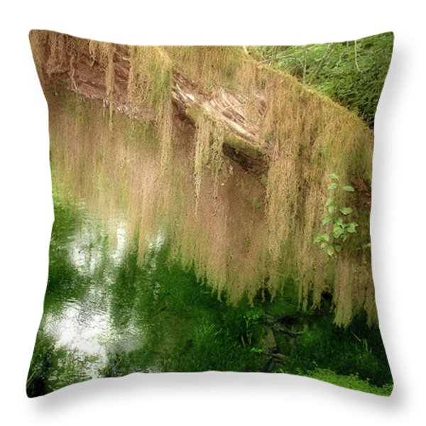 Magical Hall Of Mosses - Hoh Rain Forest Olympic National Park Wa Usa Throw Pillow by Christine Till
