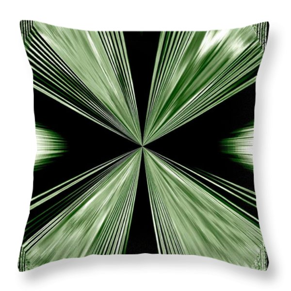 Magnetism Throw Pillow by Will Borden