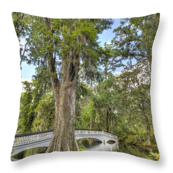 Magnolia Plantation Cypress Tree Throw Pillow by Dustin K Ryan