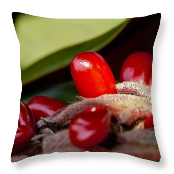 Magnolia Seeds Throw Pillow by Christopher Holmes