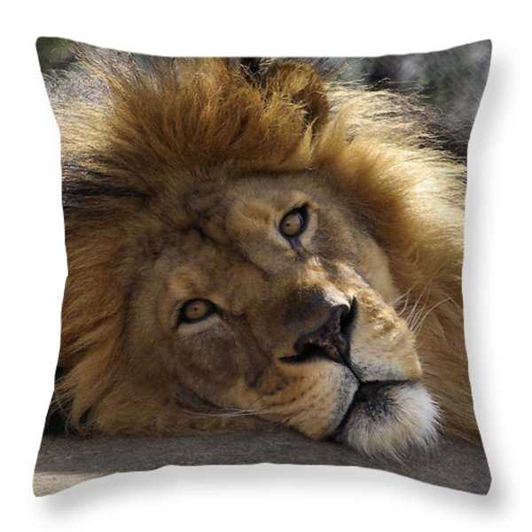 Majestic Love Throw Pillow by Linda Mishler