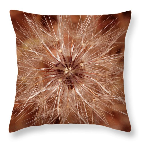 Make A Wish Throw Pillow by Cheryl Young