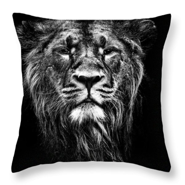 Male Asiatic Lion Throw Pillow by Meirion Matthias
