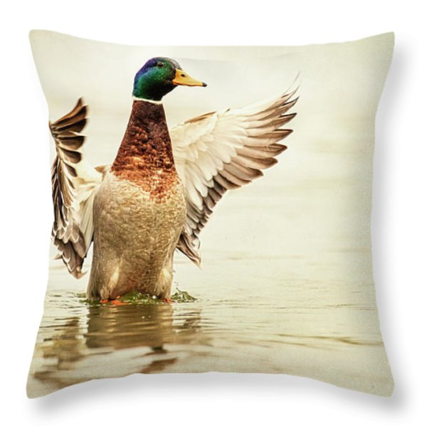 Mallard Throw Pillow by Everet Regal
