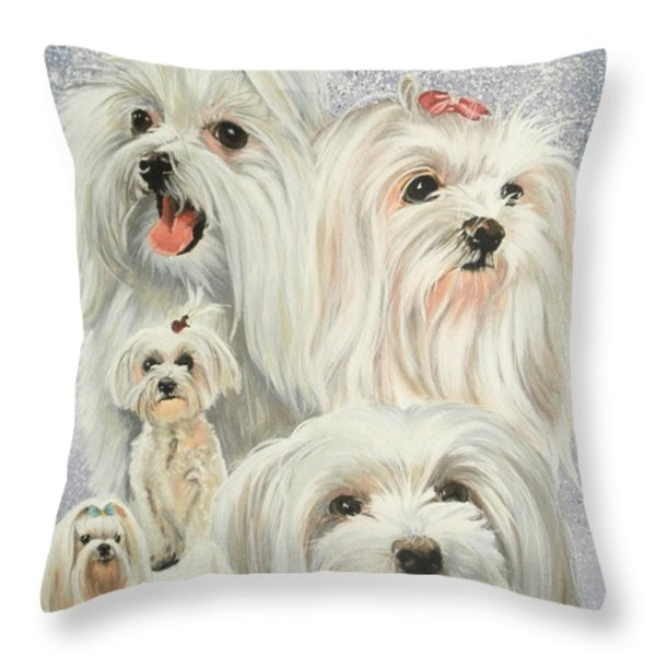 Maltese Collage Throw Pillow by Barbara Keith