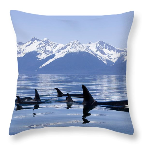 Many Orca Whales Throw Pillow by John Hyde - Printscapes