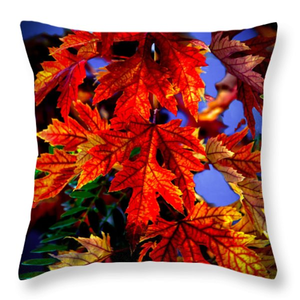 Maple Leaves Throw Pillow by Robert Bales