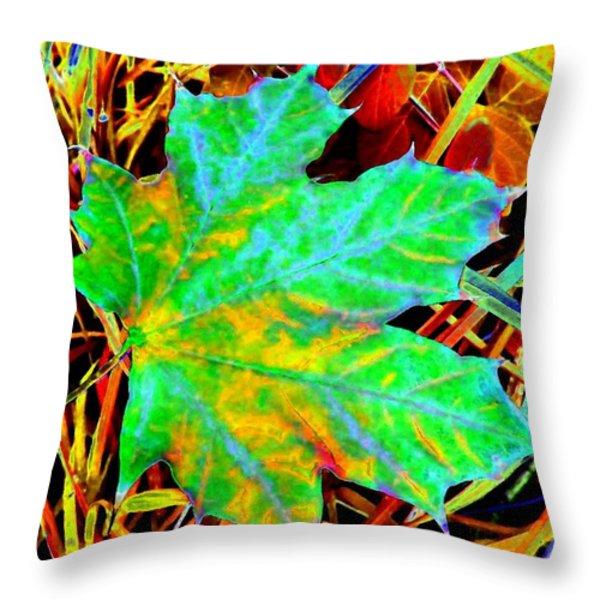 Maple Mania 21 Throw Pillow by Will Borden