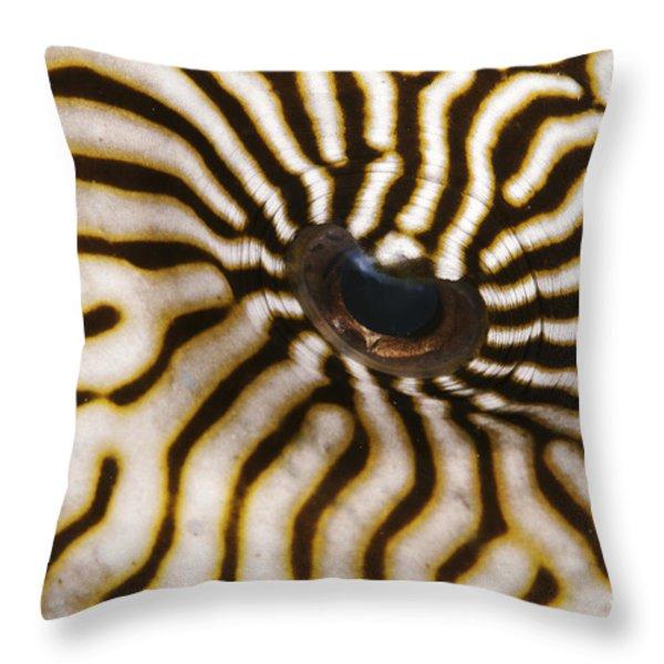 Mappa Pufferfish Eye Throw Pillow by Steve Rosenberg - Printscapes