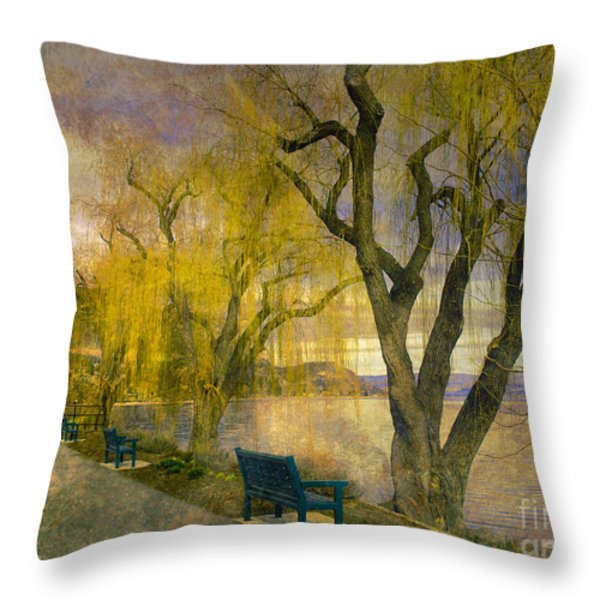 March 14 2010 Throw Pillow by Tara Turner