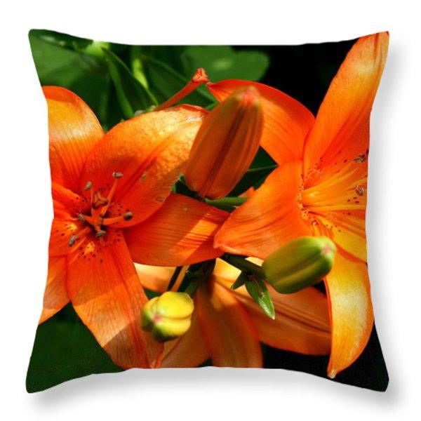 Marmalade Lilies Throw Pillow by David Dunham