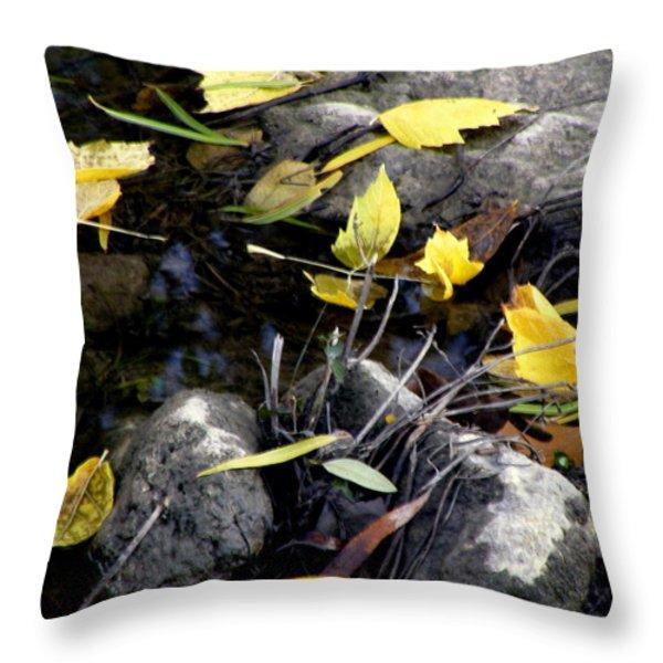 Marooned Throw Pillow by Joe Jake Pratt