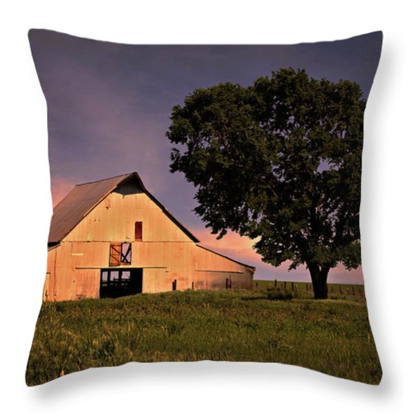 Marshall's Farm Throw Pillow by Lana Trussell