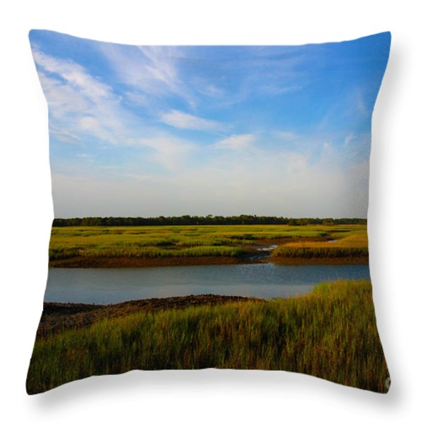 Marshland Charleston South Carolina Throw Pillow by Susanne Van Hulst