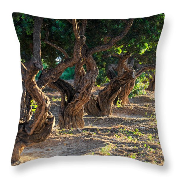 Mastic tree   Throw Pillow by Emmanuel Panagiotakis