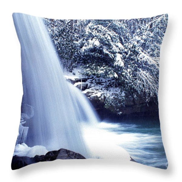 Mccoy Falls In January Throw Pillow by Thomas R Fletcher