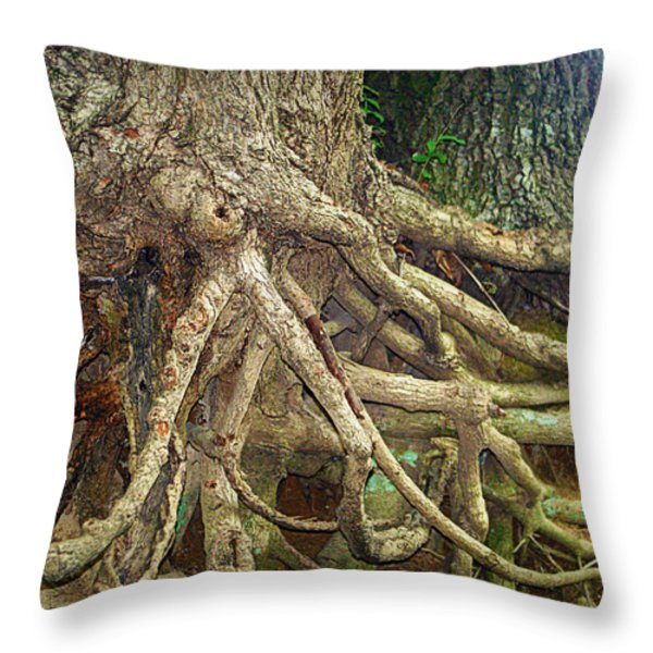 Medusa Throw Pillow by Cricket Hackmann