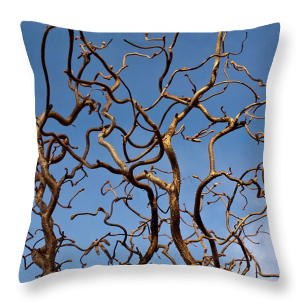 Medusa Limbs Reaching For The Sky Throw Pillow by Douglas Barnett