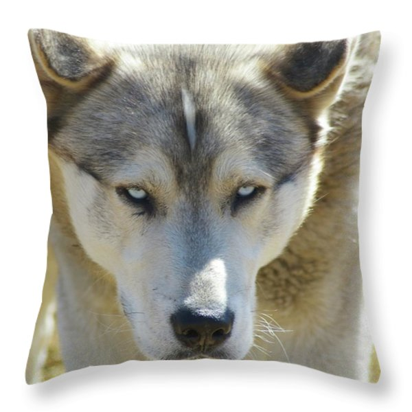 Meet Mr Happy  Throw Pillow by Jeff Swan