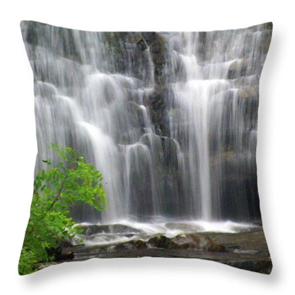 Meigs Falls 2 Throw Pillow by Marty Koch
