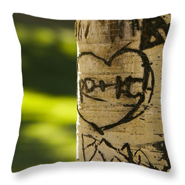 Memories In The Aspen Tree Throw Pillow by James BO  Insogna