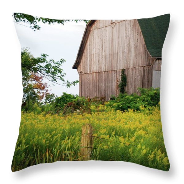 Michigan Barn Throw Pillow by Michael Peychich